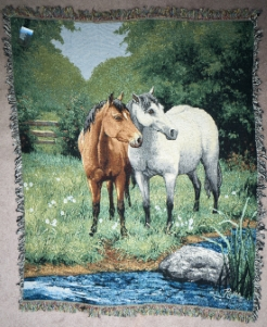 horses by stream throw